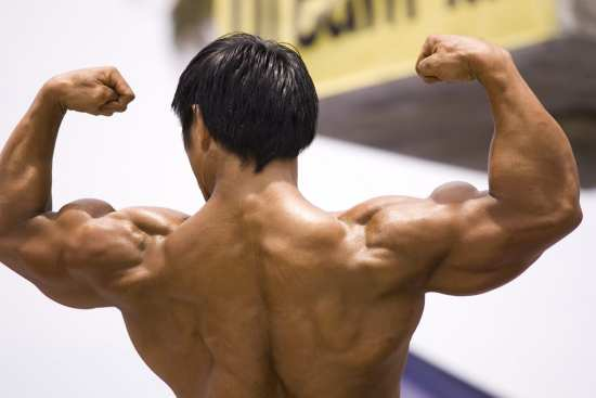 Why It Is Important to Check The Ingredients of Body Building Supplements