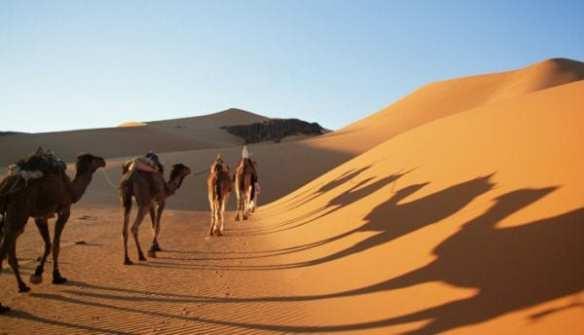 Egypt-western-desert