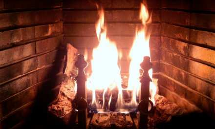 Adding fuel to the fire: choosing the perfect gas logs