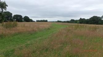 Bellingdon Farm, Hawridge