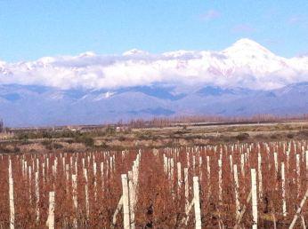 From near Mendoza