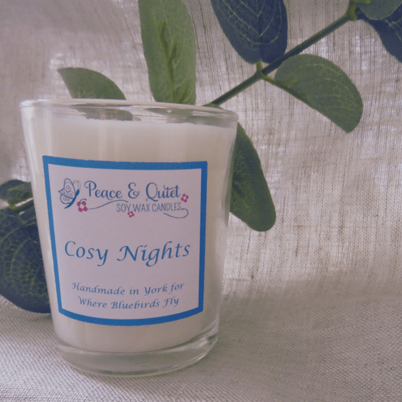 Cosy Nights Candle By Where Bluebirds Fly