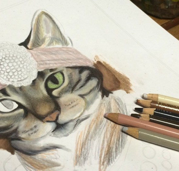 Cat Portrait Progress