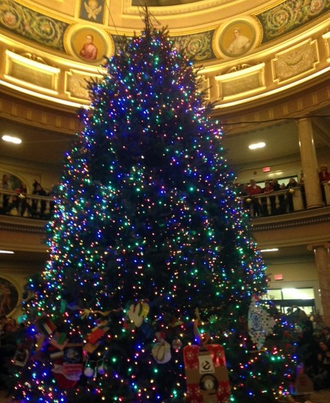 Marywood Christmas tree in the rotunda after being lit