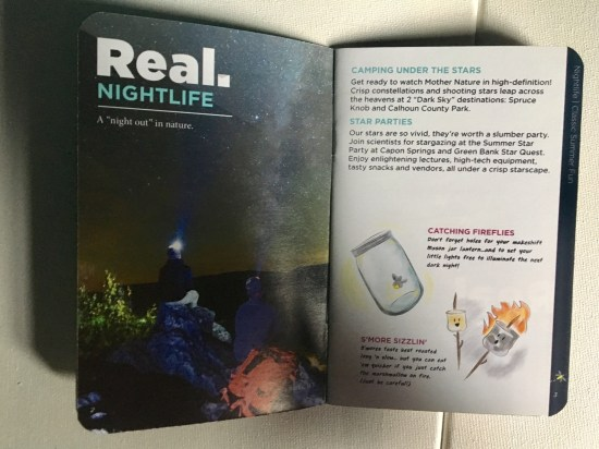nightlife guide