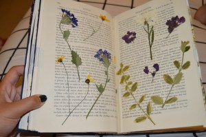 pressed flowers on an open book