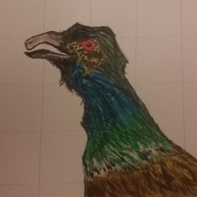 birds face in watercolor