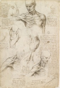 Leonardo da Vinci c. 1510