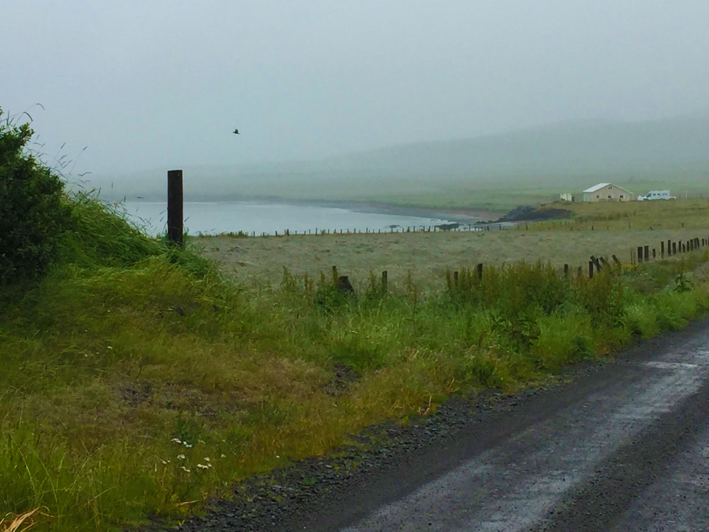 2. Daily walk along Húnaflói Bay