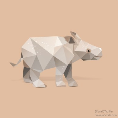 diana-dachille-dianas-animals-baby-javan-rhino