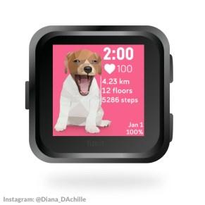 diana-dachille-dianas-animals-fitbit-animal-clock-faces-3
