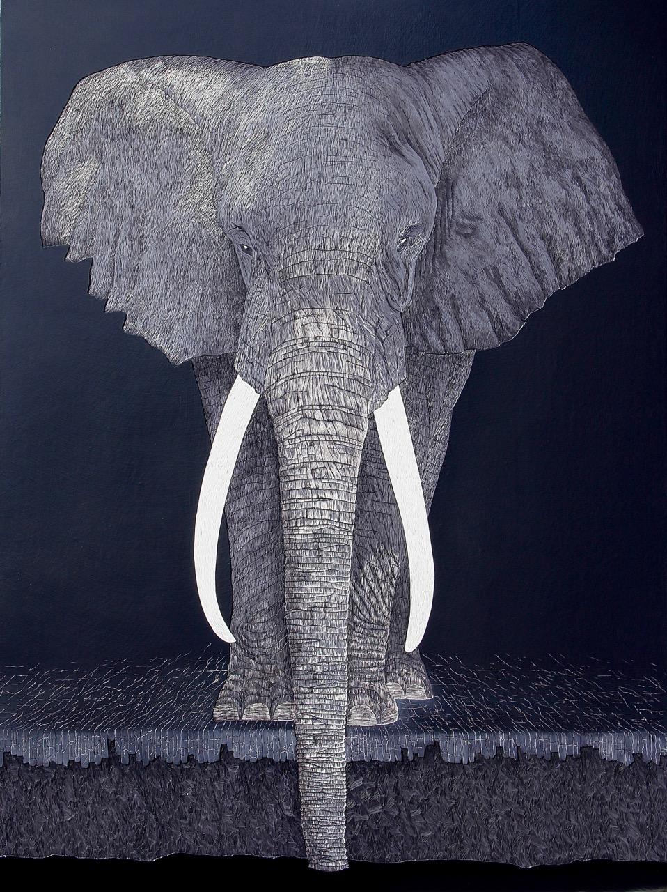 SAGE – African Elephant, Hannah Jensen