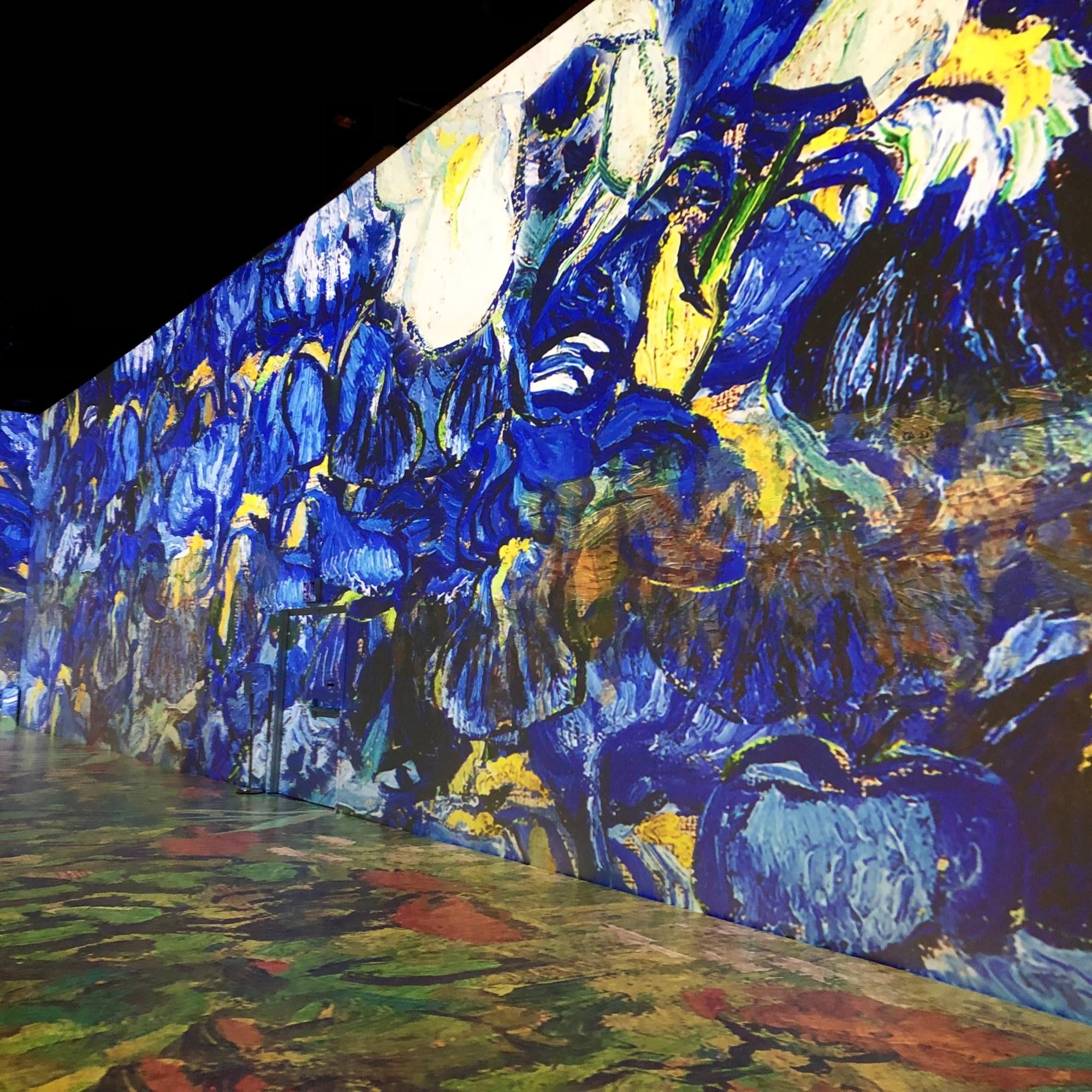 Van Gogh, Irises