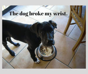 the-dog-broke-my-wrist