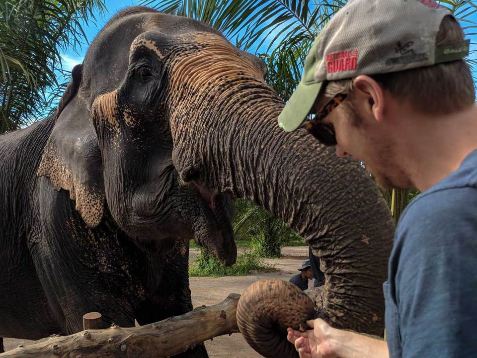 Feeding retired working elephants is one of the best things to do in Thailand