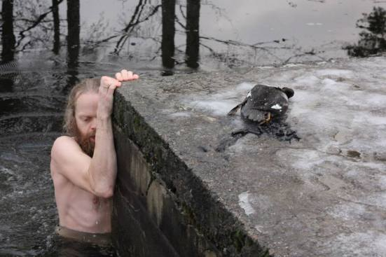 King of ducks 5