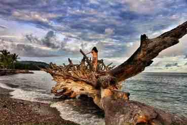Things to do Around Sulawesi and Maluku