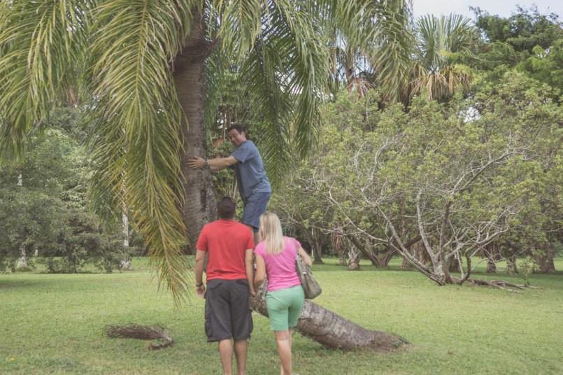 12-11-28-oahu-hawaii-00032.jpg