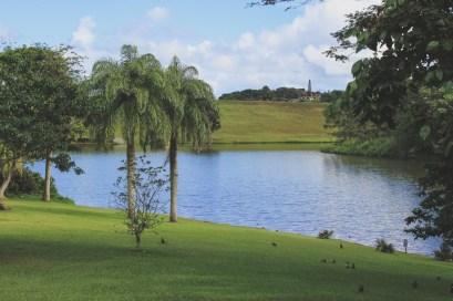 12-11-28-oahu-hawaii-5361.jpg