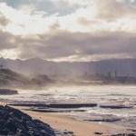 Carolina's Captures | Oahu