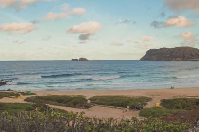 12-11-28-oahu-hawaii-5483.jpg