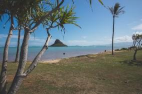 12-11-30-oahu-hawaii-00220.jpg