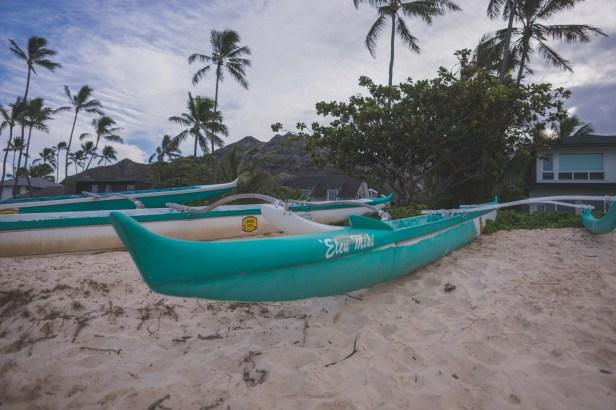 12-11-30-oahu-hawaii-00258.jpg