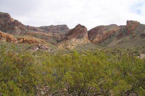 IMG_5111-estes-canyon