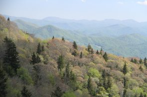One of the many views from the Blue Ridge Parkway