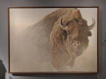 Wildlife art museum