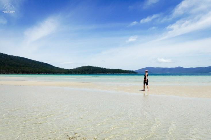 Tasmania plaże Maria Island