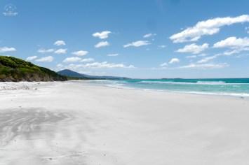 Tasmania plaże wschodniego wybrzeża