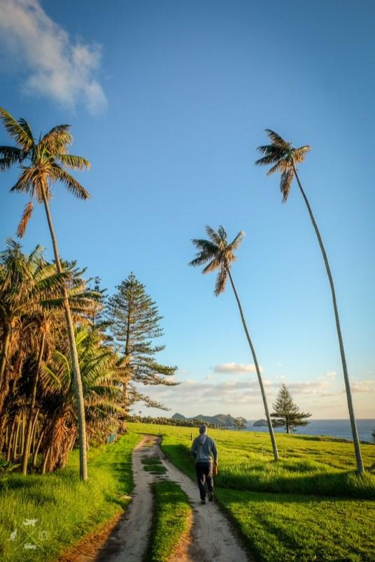 Lord-Howe-Island-Australia