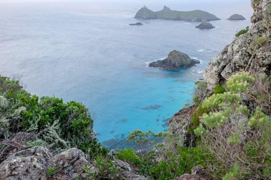 Lord-Howe-Island-klif