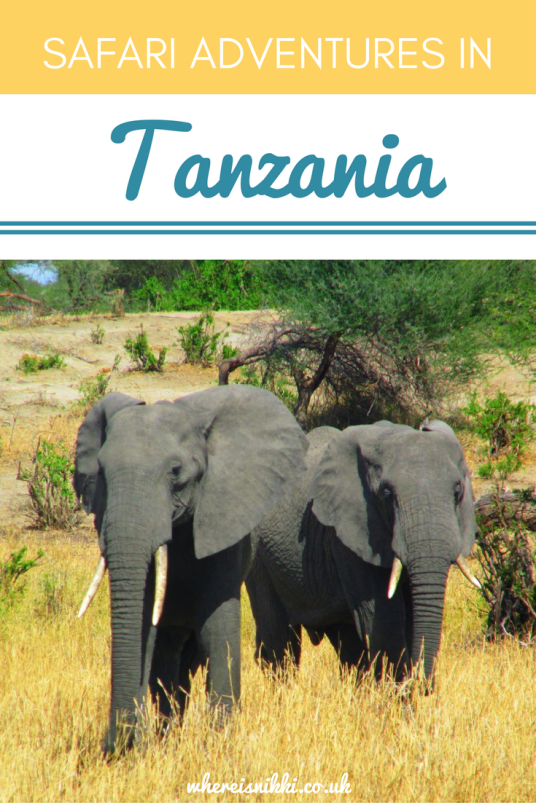 Check out Part 1 of my safari adventures in Tanzania (1)