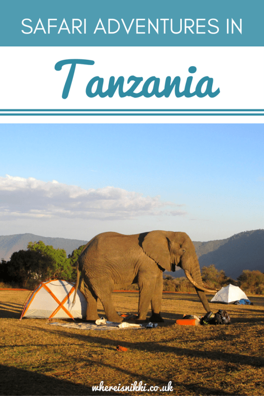 Check out Part 2 of my safari adventures in Tanzania