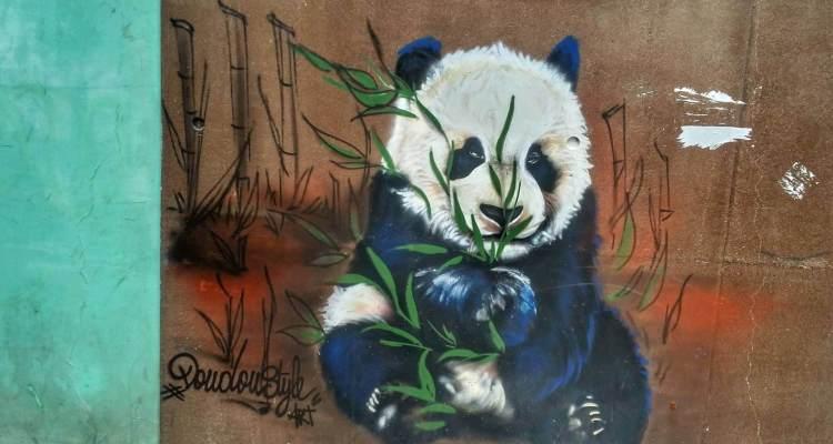 paris street art where is tara povey top irish travel blog