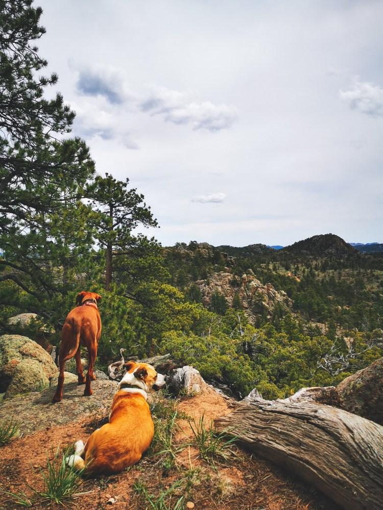 Sundance Trail dude ranch Colorado