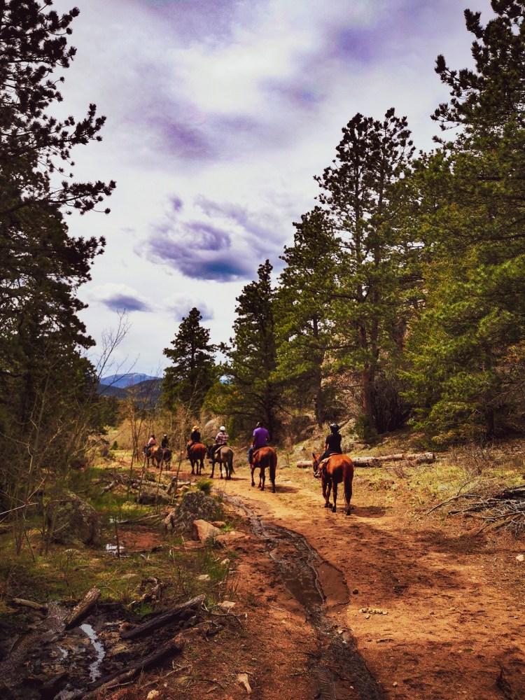 horse riding in Colorado