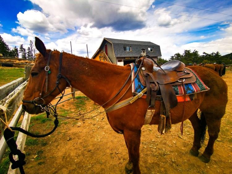 colorado dude ranch Sundance Trail