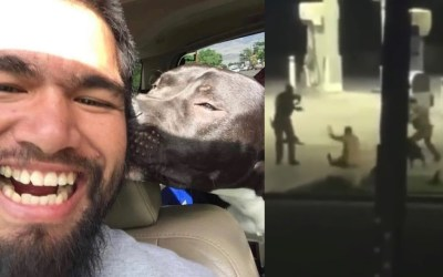 George Barlow: Indigenous Man on Life Support and Dog Dies After Encounter With Inyo Sheriff Department's Officers