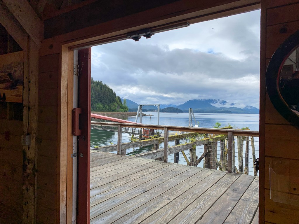 view of water in Icy Strait Point, Alaska