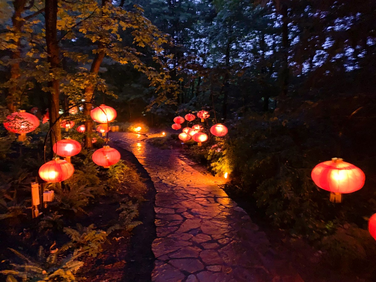 canopy lit path at the Gardens of Light in Montreal Botanical Garden