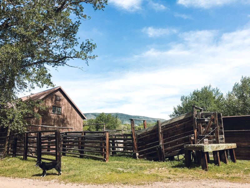 Barn and fencing at the Deerwood Ranch Wild Horse EcoSanctuary in Wyoming.