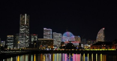 โรงแรม ที่พัก ชิน โยโกฮาม่า shin yokohama hotel wherejapan 650 x 365