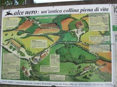 The map of the farm