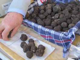 Summer truffle also