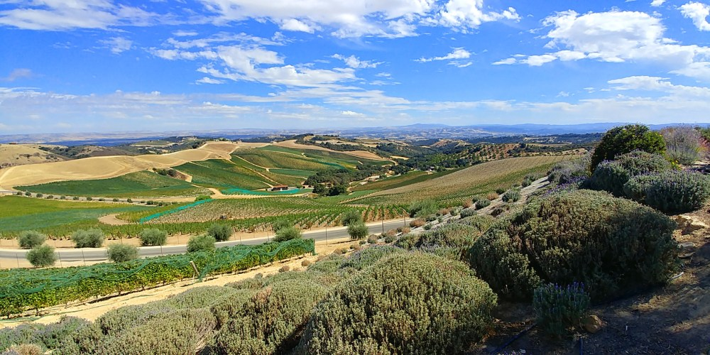 The vista from DAOU Winery and Vineyards, terraced gardens. Paso Robles CA.