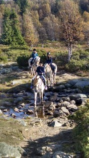 Norway langundrag nature park, horseback riding