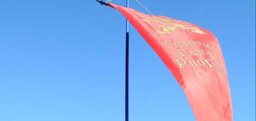 TFP Banner